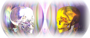 Dual Skulls Netlabel